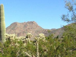 12765 N Sonoran Preserve Boulevard Unit 8-29 Marana, Az 85658