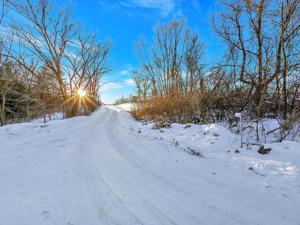 17876 Ames Trail Faribault, Mn 55021