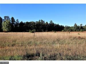 L12 B1 Cullen Woods Drive Pequot Lakes, Mn 56472