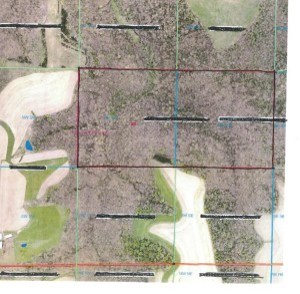 Xx Sanden Road Mound Prairie Twp, Mn 55943