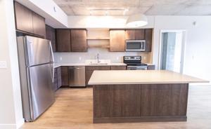 816 Portland Avenue Unit 221 Minneapolis, Mn 55404