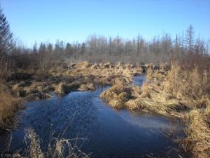 Xxx Birch Rd Moose Lake, Mn 55767
