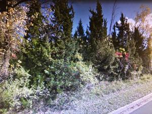 Xxxx Golden Ridge Drive Eden Prairie, Mn 55344