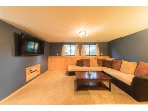13308 Linwood Forest Circle Champlin, Mn 55316
