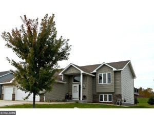 1032 S Chestnut Street Belle Plaine, Mn 56011