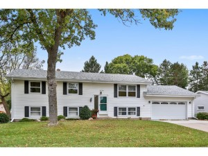 2829 Lakeview Avenue Roseville, Mn 55113