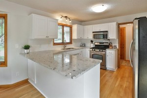 4810 Valley Forge Lane N Plymouth, Mn 55442