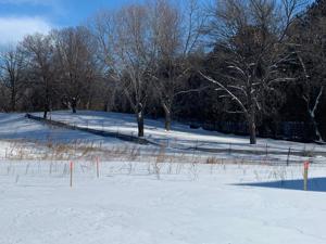 1687 Annika Drive N Lake Elmo, Mn 55042