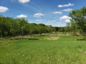 5xxx Meadow Crossing Road Sw Rochester, Mn 55902
