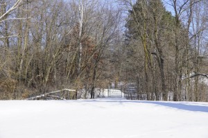 15806 Knightwood Road Cold Spring, Mn 56320