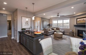19525 Pine Tree Place Rogers, Mn 55311