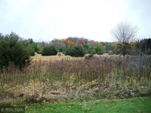 Lot 1 Cty Rd M River Falls, Wi 54022