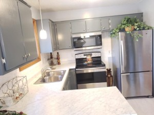 11845 Jonquil Street Nw Coon Rapids, Mn 55433