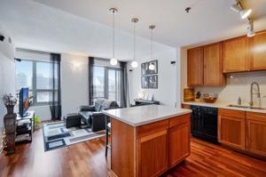 929 Portland Avenue Unit 703 Minneapolis, Mn 55404