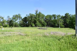 1934 County Road 20 Lynd, Mn 56157