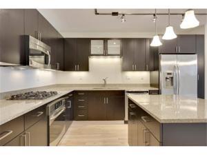 215 10th Avenue S Unit 437 Minneapolis, Mn 55415