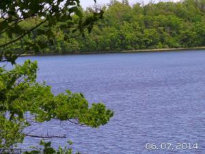 51xxx Curly Drive Leaf Lake Twp, Mn 56527