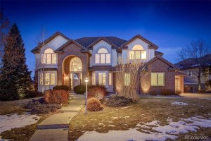 9420 South Star Hill Circle Lone Tree, Co 80124