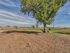 3171 County Road 6 Erie, Co 80516