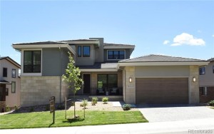 9524 Fork Bluff Point Lone Tree, Co 80124